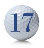 golf ball 17